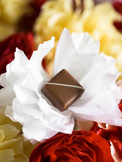 """Jasmin Mangue - Collection """"Au coeur des jardins de Paris"""" (Saint Valentin 2018) par La Maison du Chocolat (Nicolas Cloiseau)"""