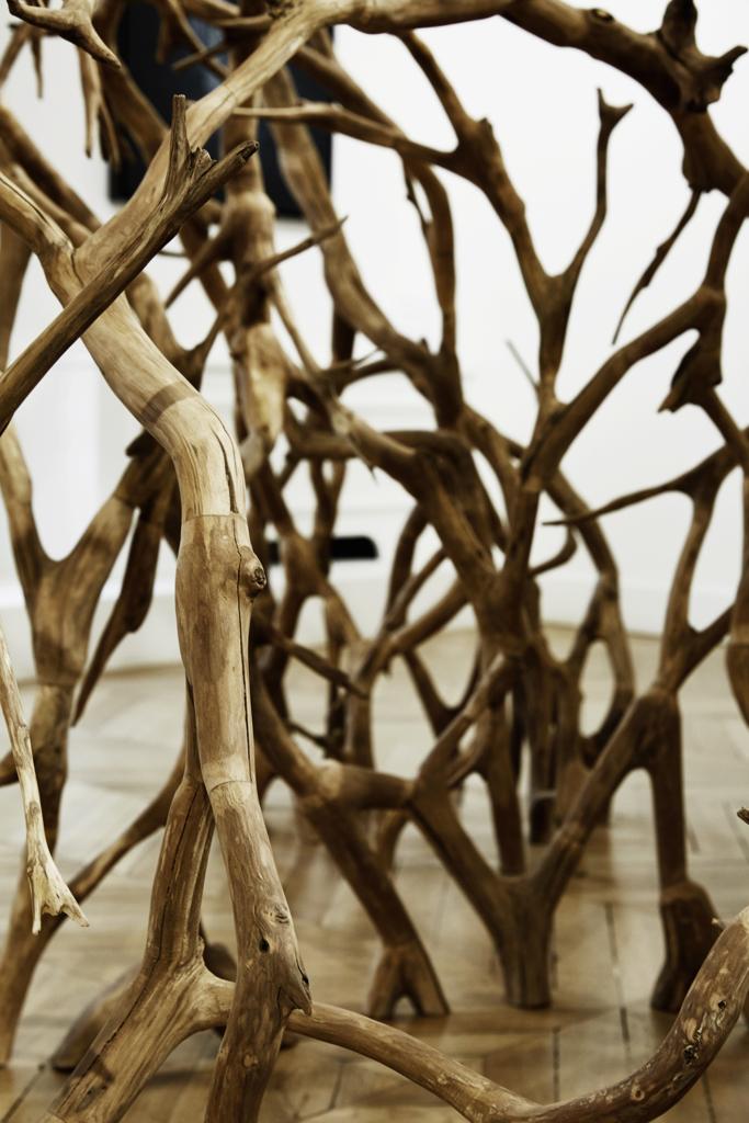 L'épaisseur du temps, Vincent Laval - Plus loin dans la forêt (Galerie Graf, 2020)