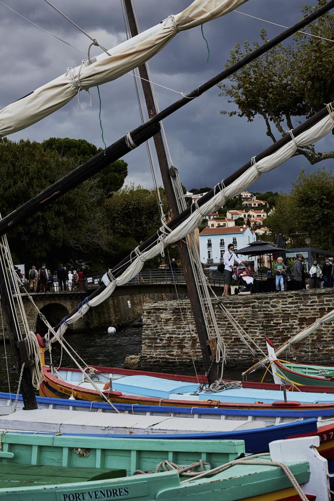 Collioure_Port